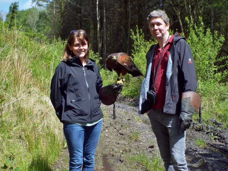 Hawk Walk at Coed y Cymoedd Forest District Resolven Neath