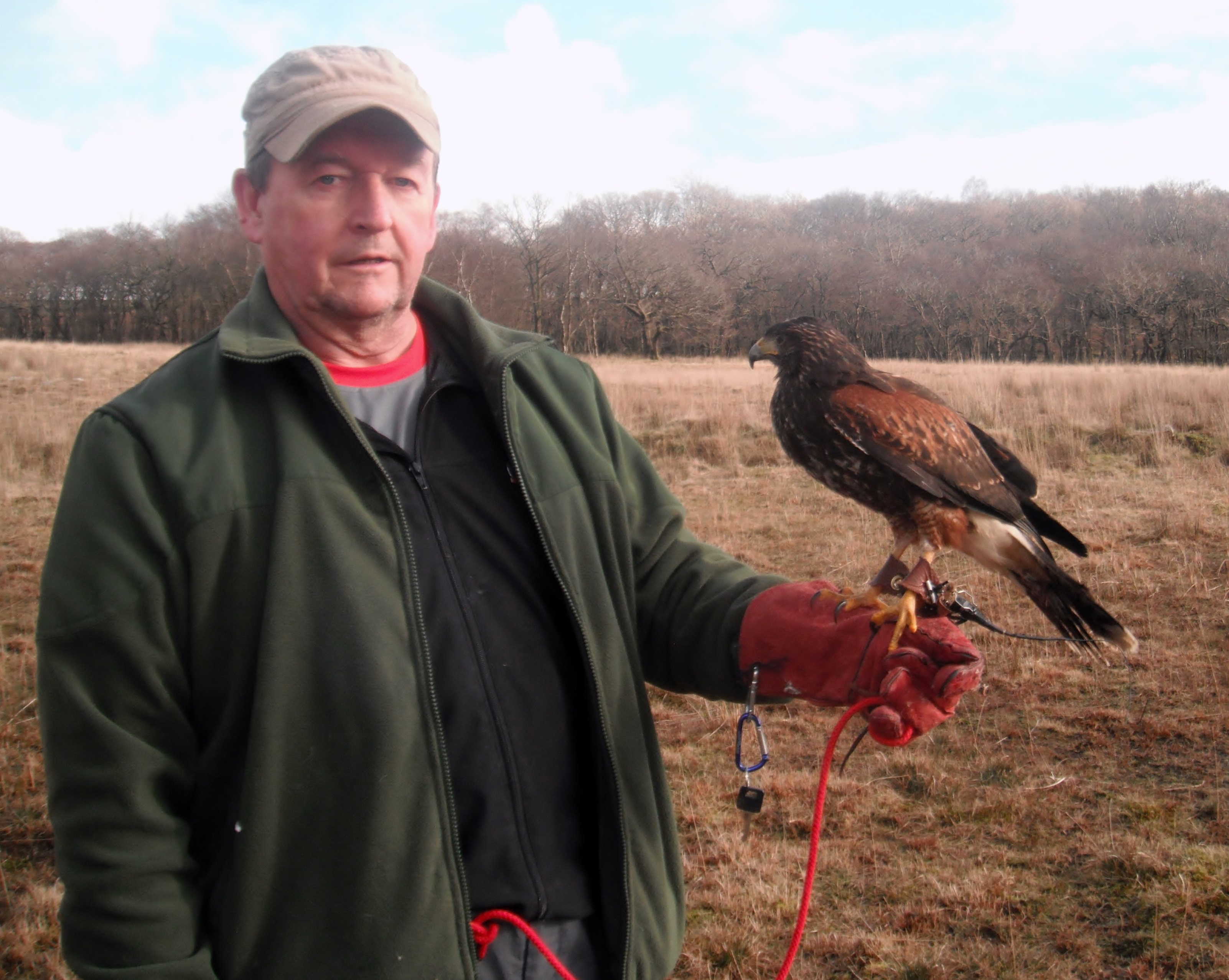 Jeff wth the Harris Hawk