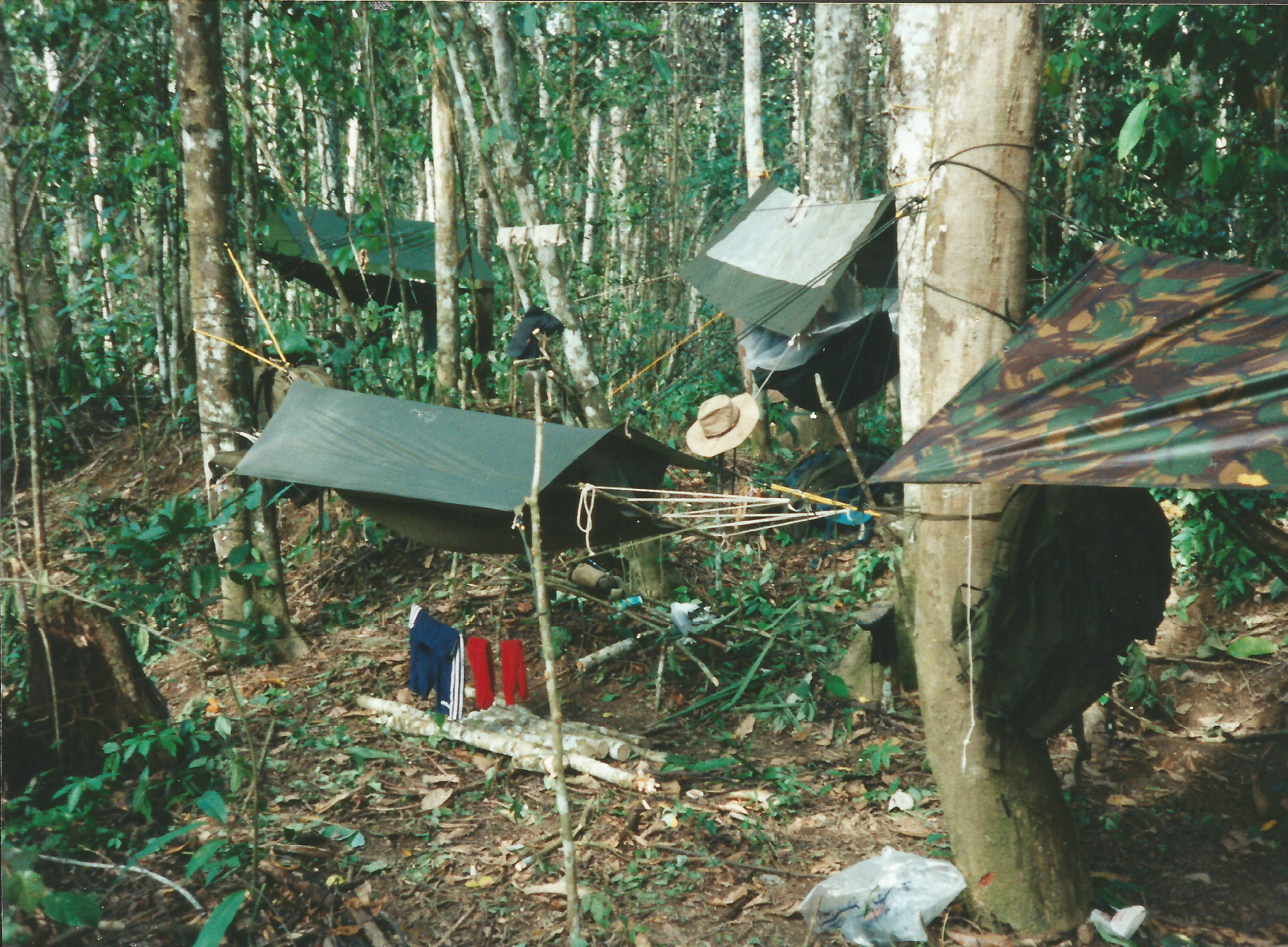 Jungle Camp